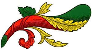 CA 'CE' U CARICU
